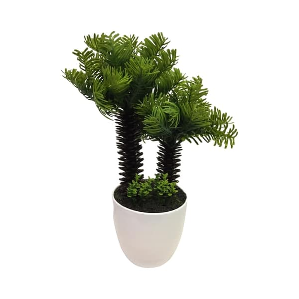 Palm Tree Bonsai Overstock 22868417