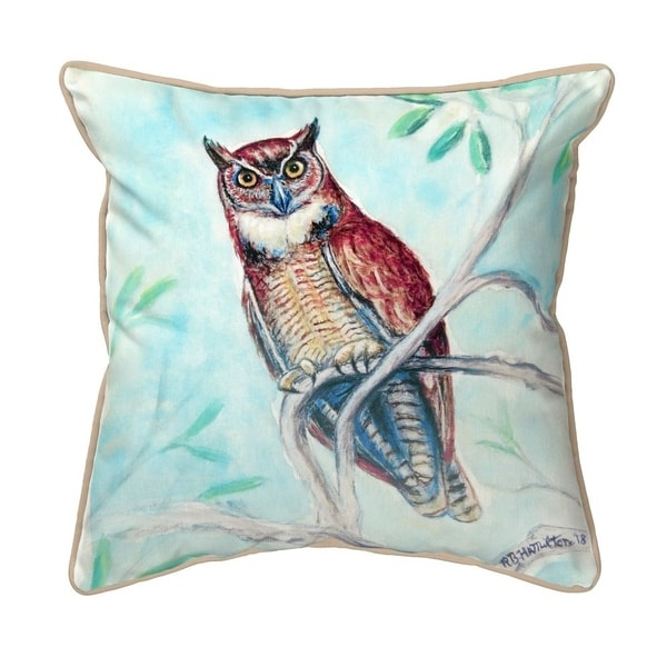 Owl in Teal Small Indoor/Outdoor Pillow 12x12