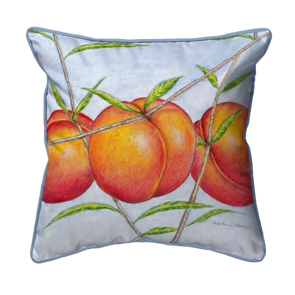 Peaches Extra Large Zippered Pillow 22x22