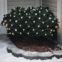 Celebrations  LED Mini  Traditional  Net Light Set  Warm White  4 ft. x 6 ft.  100 lights