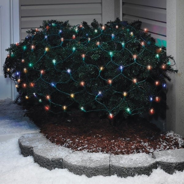 Shop Celebrations LED Mini Traditional Net Light Set Multicolored 4 ft. x 6 ft. 100 lights - Free Shipping On Orders Over $45 - Overstock - 22884278