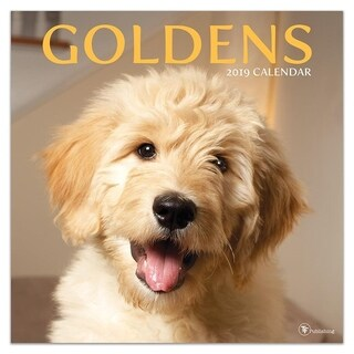 2019 Goldens Wall Calendar