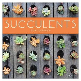 2019 Succulents Wall Calendar