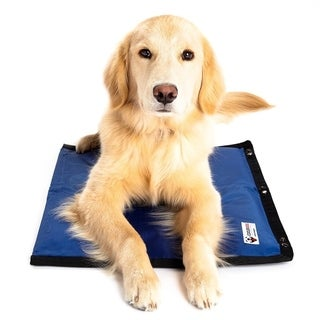 Cooler Dog Turbo Cooling Mat