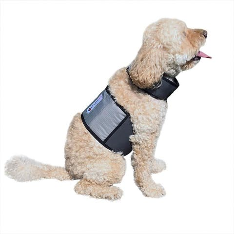 CoolerDog Cooling Vest and Collar (Small)