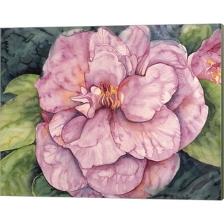 Mary Russel 'Pink Camilla' Canvas Art