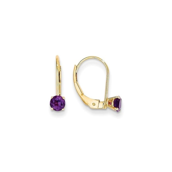 Curata 14k Yellow Gold Amethyst Leverback Earrings 5x14mm