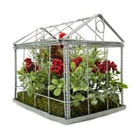 """9"""" Red Cardinal Boxwood and Berry Artificial Christmas Greenhouse Arrangement"""
