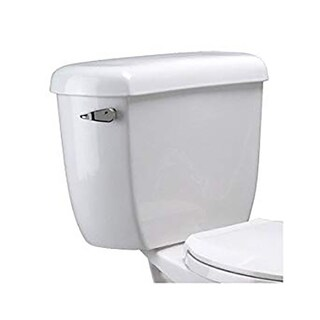 Zurn EcoVantage® Dual Flush Elongated Two Piece Toliet Z5562 White - N/A