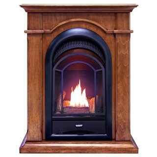 ProCom FS100T-AS Ventless Fireplace System 10K BTU Dual-Fuel Thermostat Insert and Apple Spice Mantel