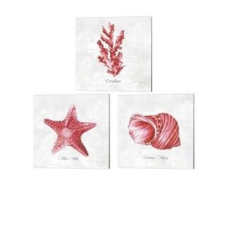 Eva Watts 'Red Sea Coral, Seashell & Starfish' Canvas Art (Set of 3)