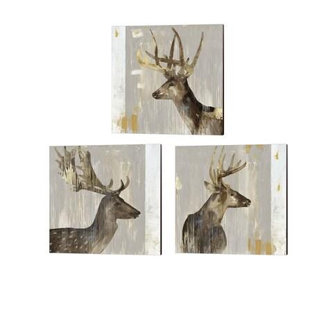 Aimee Wilson 'Stag' Canvas Art (Set of 3)