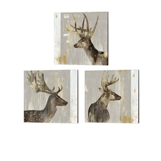 Aimee Wilson 'Stag' Canvas Art (Set of 3)