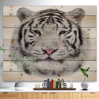 'White Bengal Tiger' Animal Art Print on Natural Pine Wood - Black