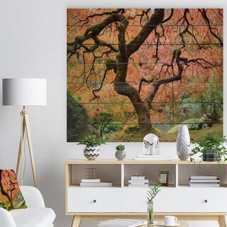 Designart 'Autumn Maple Tree' Landscape Photography Print on Natural Pine Wood - Red