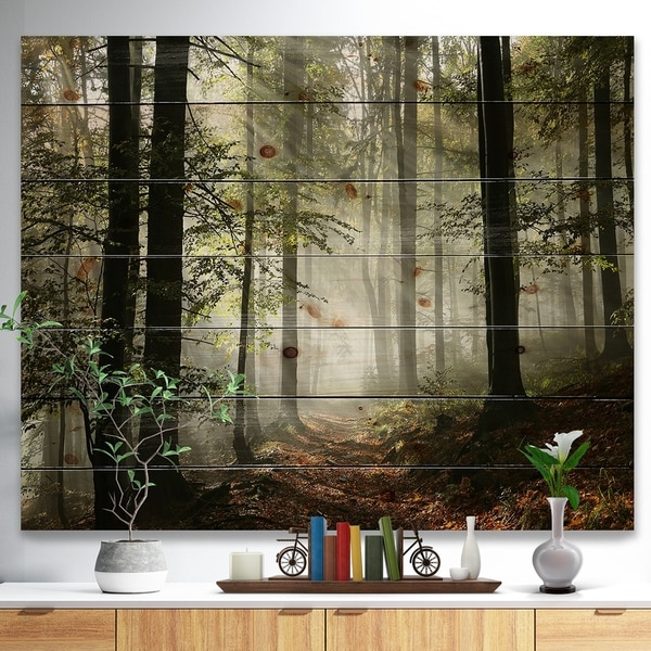Designart 'Light in Dense Fall Forest with Fog' Landscape Print on Natural Pine Wood - Green