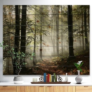 'Light in Dense Fall Forest with Fog' Landscape Print on Natural Pine Wood - Green