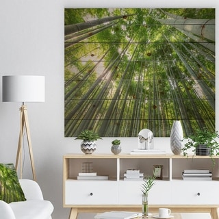 Designart 'Peaks of Bamboo in Kyoto Forest' Forest Print on Natural Pine Wood - Green