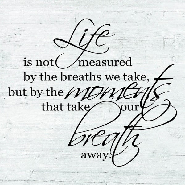 Decorative Wall Sign- Life is Not Measured