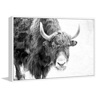 Marmont Hill - Handmade Buffalo Forward Floater Framed Print on Canvas