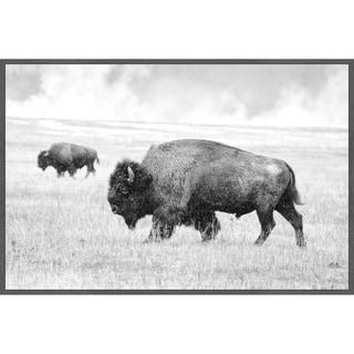 Marmont Hill - Handmade Buffalo Pair Floater Framed Print on Canvas
