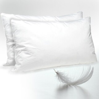 Lauren Taylor - Twin Pack Feather & Down Pillow - White