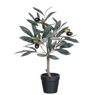 """Potted Olive Tree - green, brown, tan, black - 10""""l x 10""""w x 14""""h"""