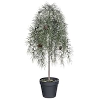 "Potted Weeping Pine Tree with Snow - 11""l x 11""w x 23""h"