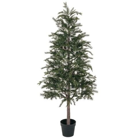 """Potted Pine Tree - 30""""l x 30""""w x 5' 4""""h"""
