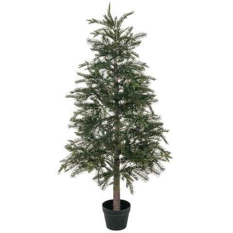 """Potted Pine Tree - 26""""l x 26""""w x 4' 4""""h"""