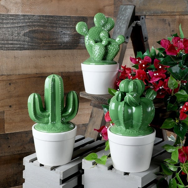 """Dolomite Potted Cactus Jar 10"""" 3as"""""""