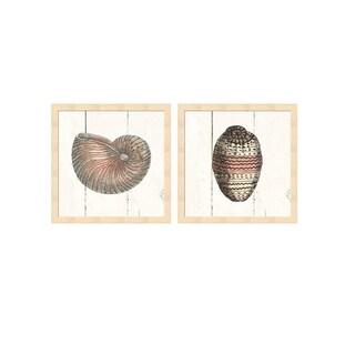 Wild Apple Portfolio 'Shell Sketches Shiplap B' Framed Art (Set of 2)