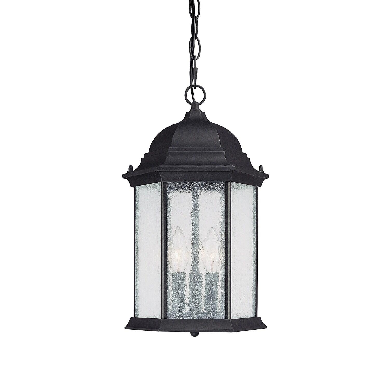 Light Black Outdoor Hanging Lantern