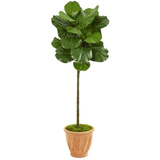 Nearly Natural 57-inch Fiddle Leaf Artificial Tree in Terracotta Planter