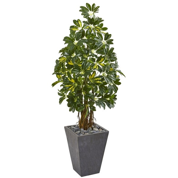 Nearly Natural Schefflera 57-inch Artificial Tree in Slate Planter