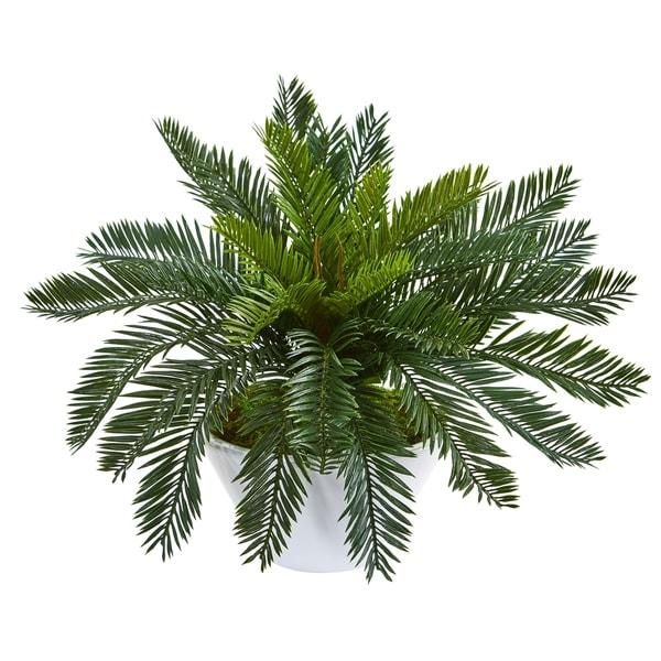 Cycas Artificial Plant in Ceramic White Planter