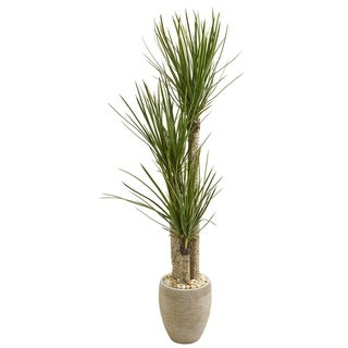Nearly Natural Artificial Yucca Tree in Sand Colored Planter