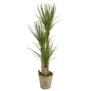 Nearly Natural Yucca 5-foot Artificial Tree in Farmhouse Planter