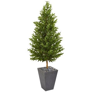 Olive Cone Topiary 67-inch Indoor/Outdoor Artificial Tree in Slate Planter