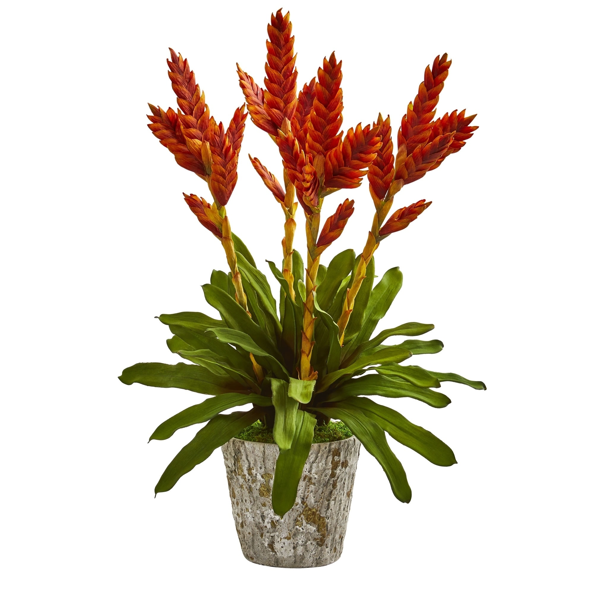 Shop Tropical Bromeliad Artificial Arrangement In Weathered