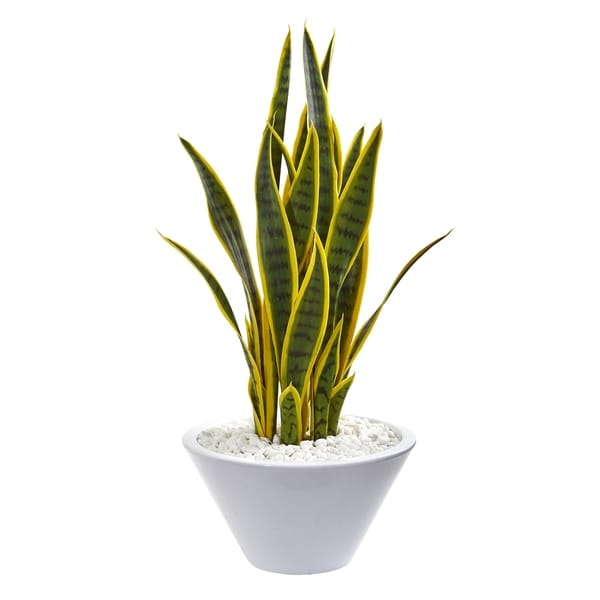 Nearly Natural 2-foot Sansevieria Artificial Plant in White Bowl
