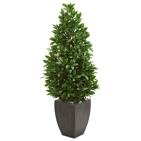 Nearly Natural 56-inch Indoor/Outdoor UV Resistant Bay Leaf Cone Topiary Artificial Tree in Black Planter