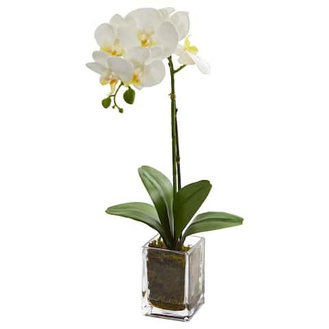 "24"" Orchid Phalaenopsis Artificial Arrangement in Vase"