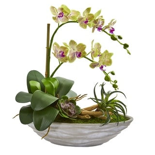 Phalaenopsis Orchid and Succulent Artificial Arrangement in White Vase