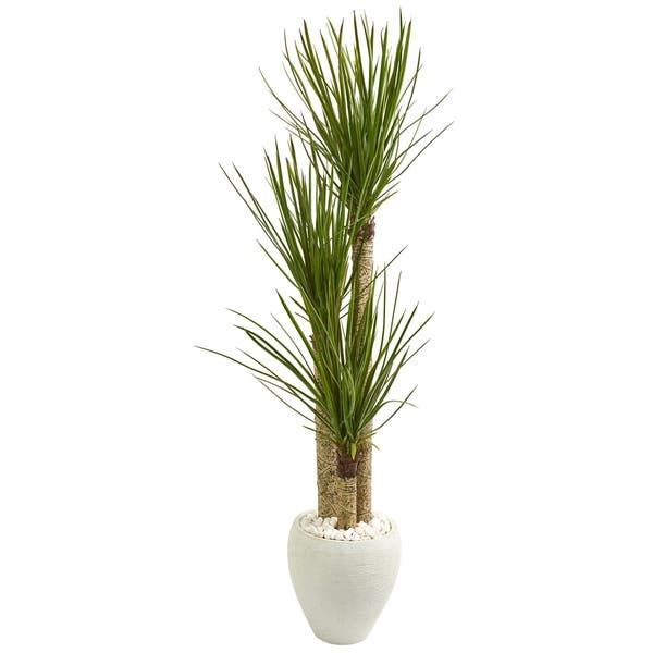 Nearly Natural 5 5 Foot Yucca Artificial Tree In White Planter On Sale Overstock 23500765