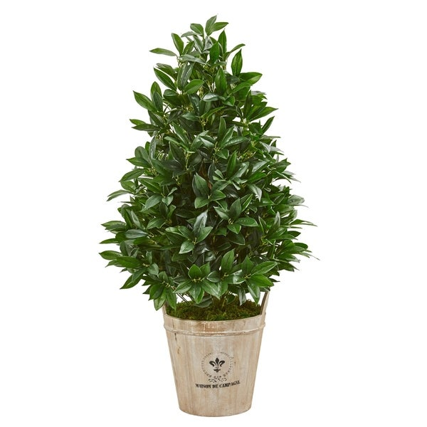Nearly Natural Bay Leaf Cone 39-inch Topiary Artificial Tree in Farmhouse Planter. Opens flyout.