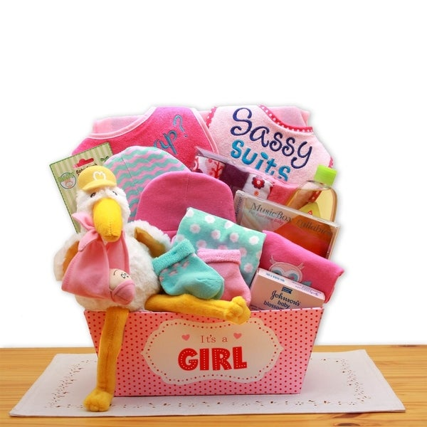 Shop A Special Delivery New Baby Gift Basket- Pink - On Sale - Free Shipping Today - Overstock - 23505711