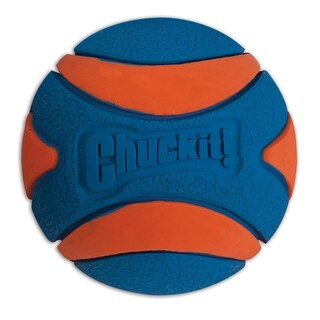 Chuckit Ultra Squeaker Ball - orange & blue