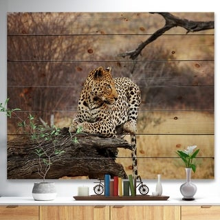 'Leopard Sitting on Tree Trunk' African Print on Natural Pine Wood - Brown