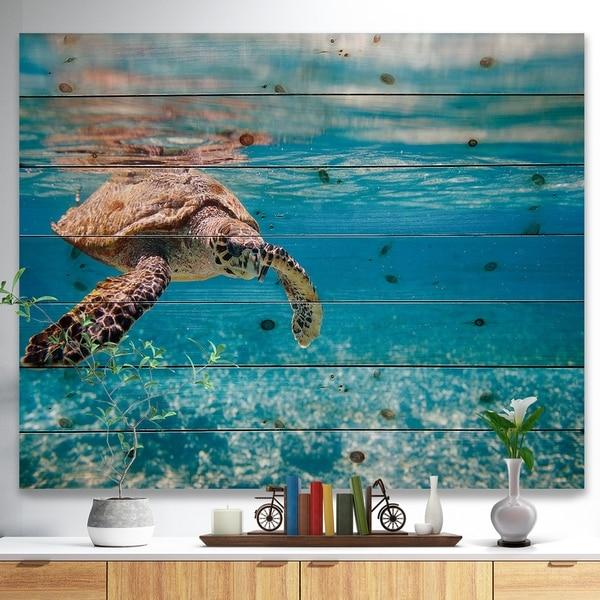 Designart 'Large Hawksbill Sea Turtle' Abstract Print on Natural Pine Wood - Blue